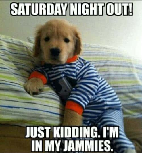 saturday night out meme