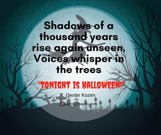 Best Halloween Quotes and Sayings Images, Cards