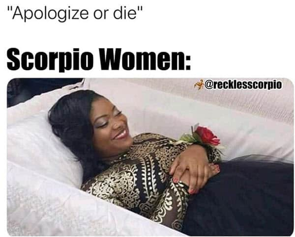 scorpio apologize or die memes