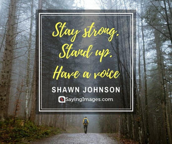 shawn johnson stand up quotes