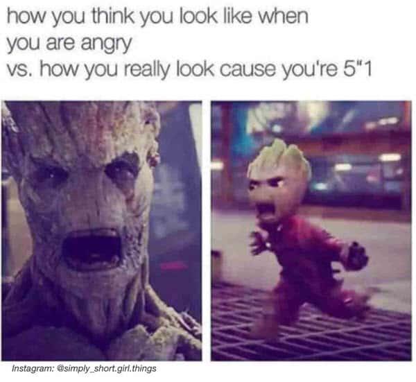short girl angry memes