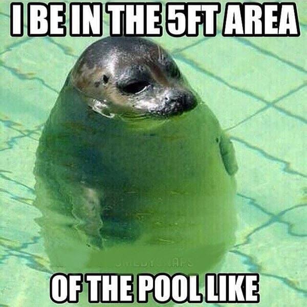 short girl pool memes
