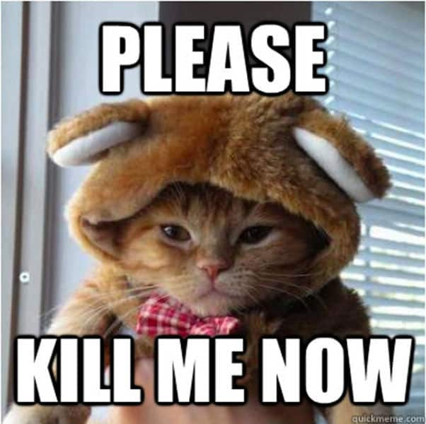 20 Kill Me Memes That Perfectly Capture Your Mood Sayingimagescom