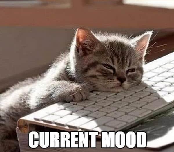 sleepy current mood meme