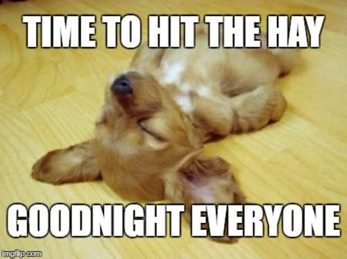 sleepy goodnight meme