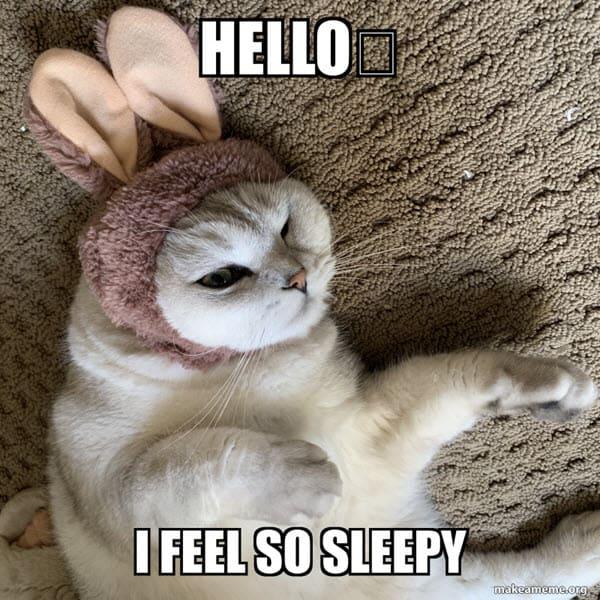 sleepy hello meme