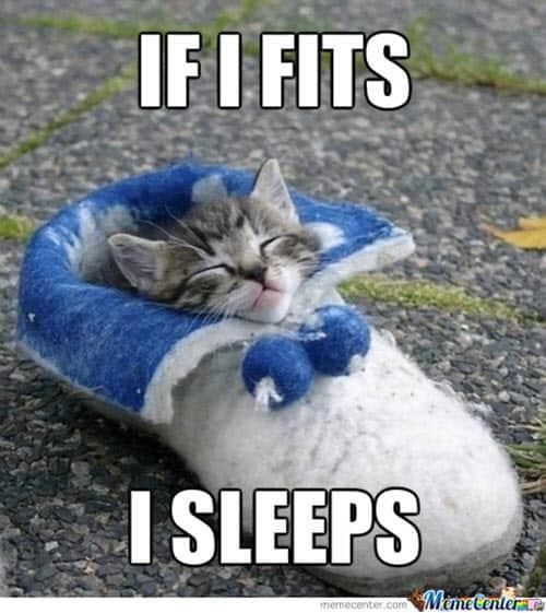 sleepy i sleep meme