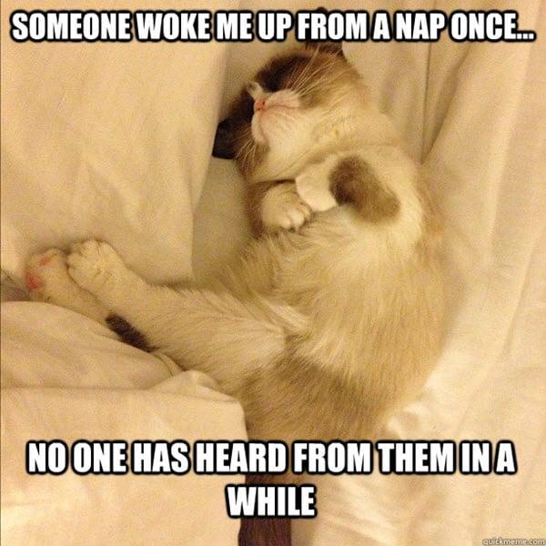 sleepy someone woke me up meme