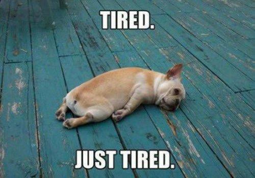 sleepy tired meme