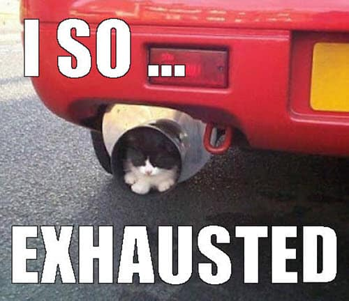 so exhausted meme
