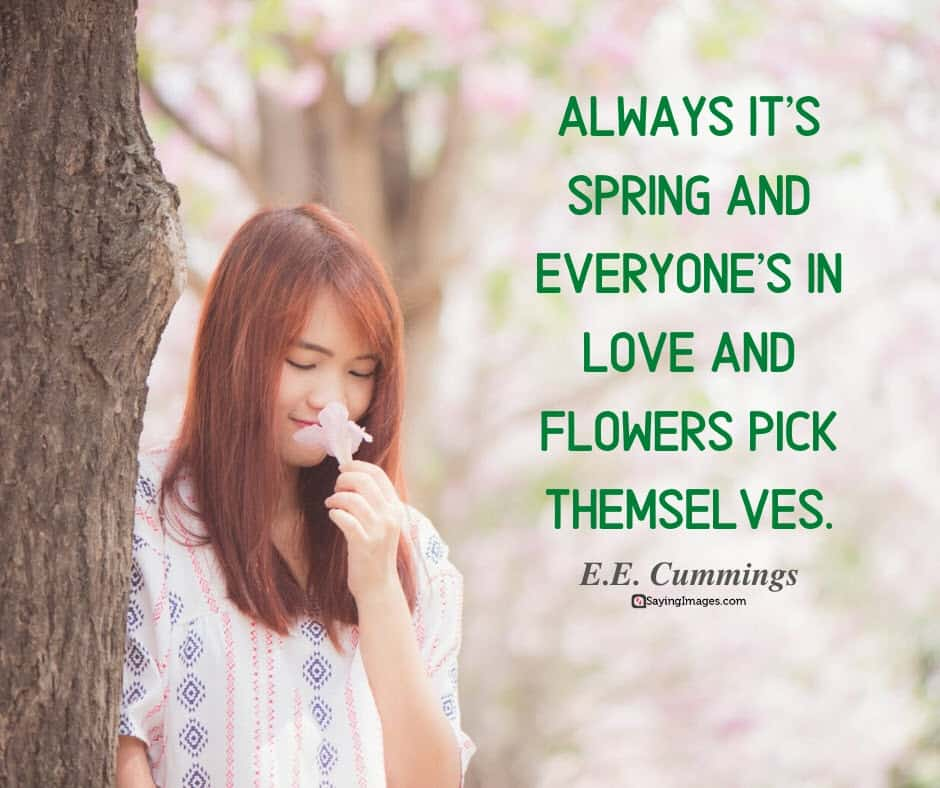spring flowers quotes