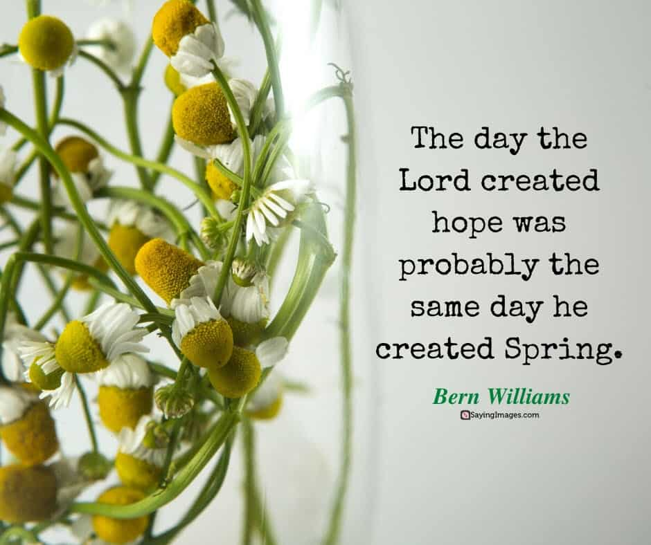 spring hope quotes