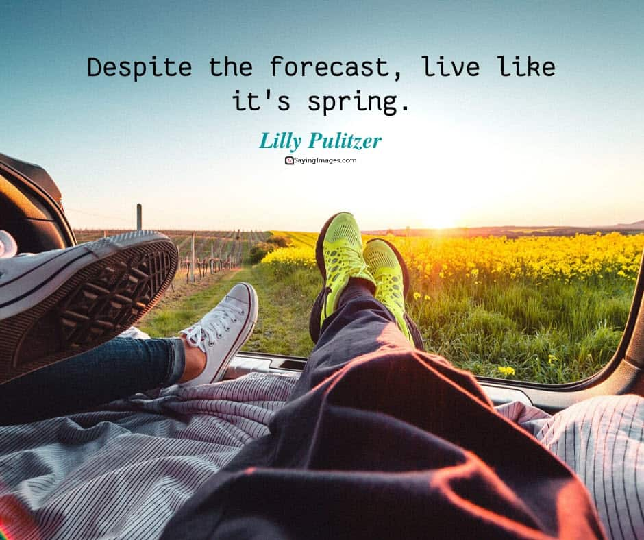 spring live quotes