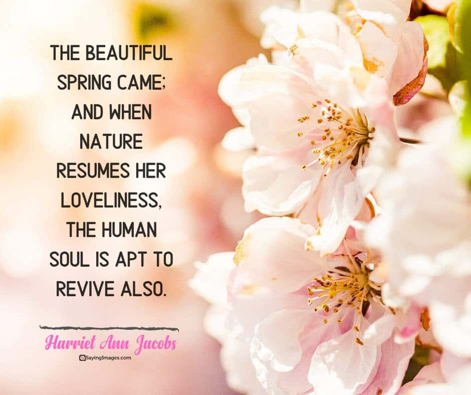 spring soul quotes
