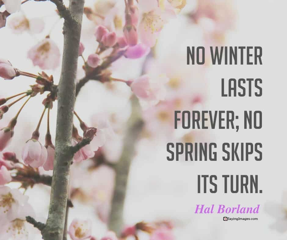spring winter quotes