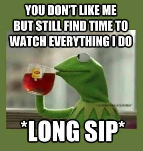 stalking watch everything i do meme