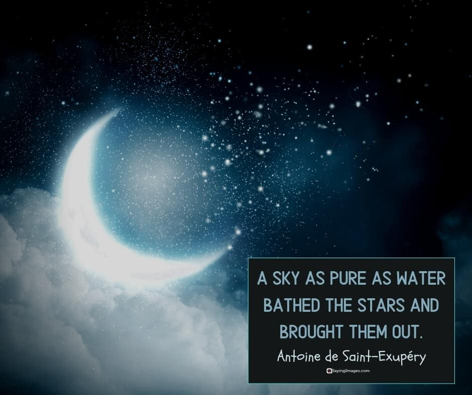 star pure quotes