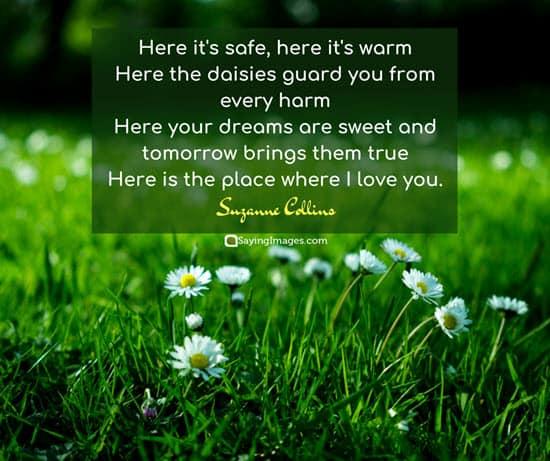 suzanne collins romantic quotes