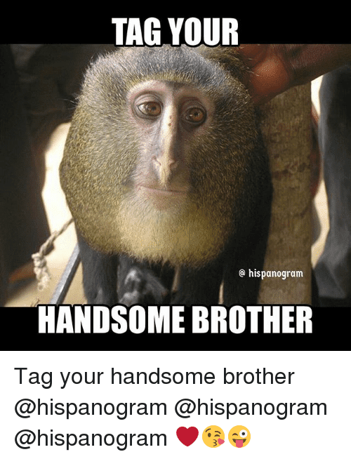20 Very Funny Brother Memes You Should Totally Check Out