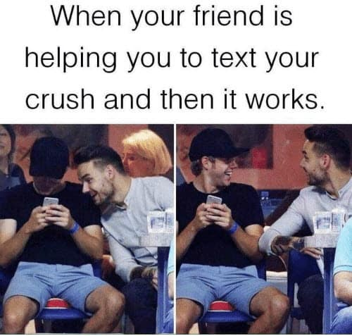text your crush memes