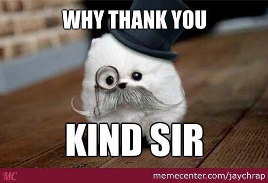 thank you kind sir memes