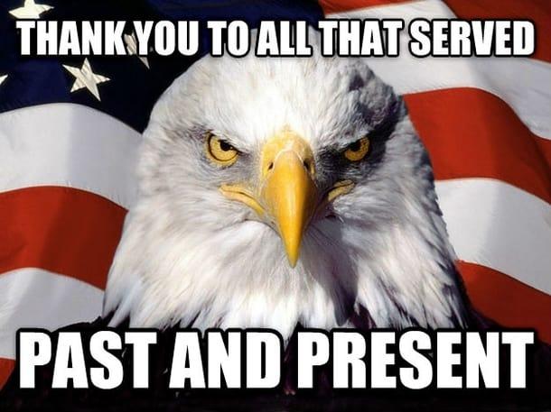 20 Best Veteran S Day Memes Sayingimages Com