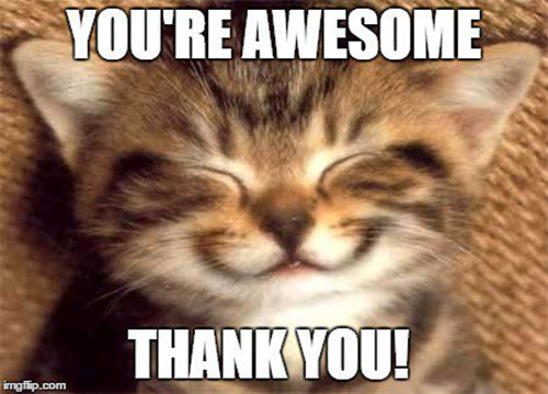 thank you youre awesome memes