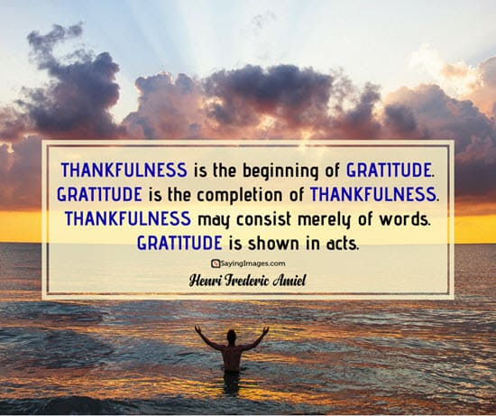 thankfulness gratitude quotes