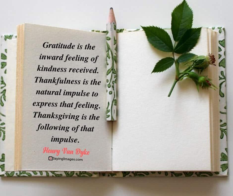 thanksgiving gratitude quotes