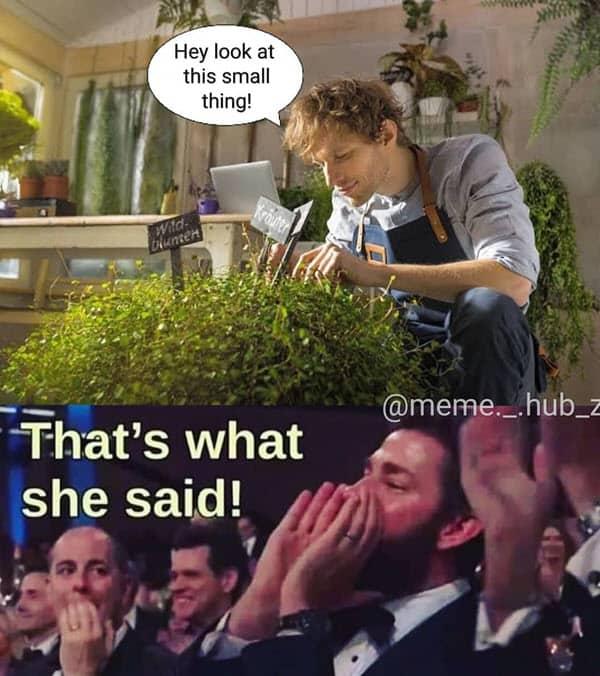 thats what she said small thing meme