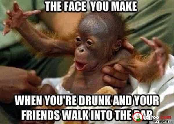 Funny Meme Expression : Funny monkey memes you ll totally fall in love with