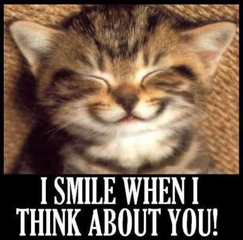 thinking about you i smile meme