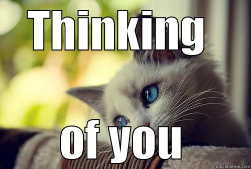 thinking of you cat meme