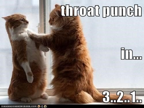 throat punch in 3 2 meme