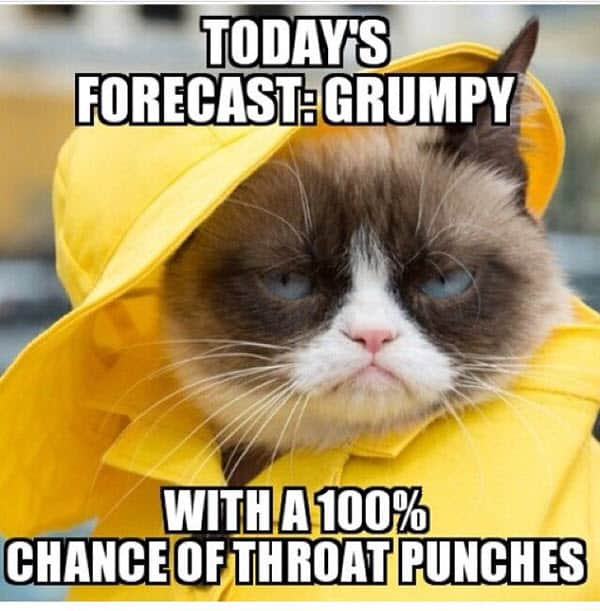 throat punch todays forecast meme