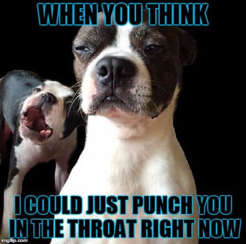 throat punch when you think meme