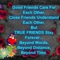 true friend quotation