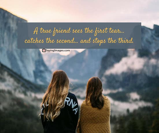 true friend quotations