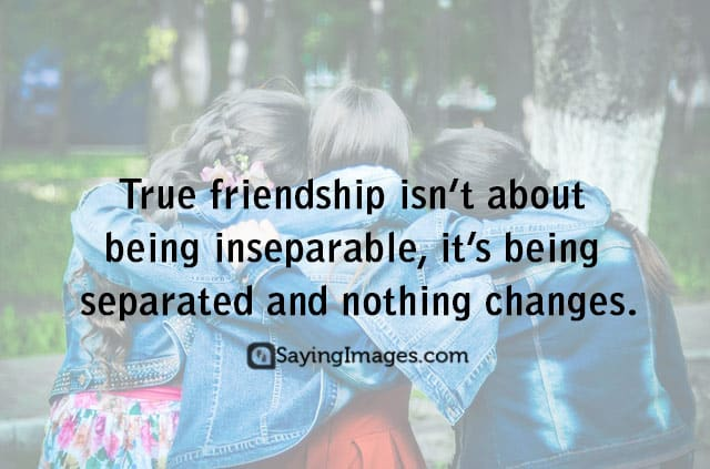 true friends quotes pictures