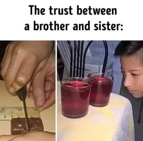 trust siblings memes
