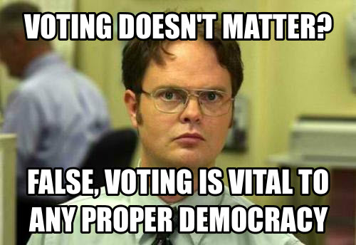 voting does not matter meme