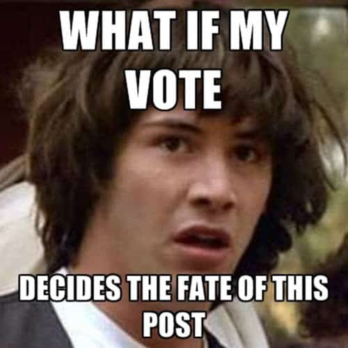 voting what if my vote meme