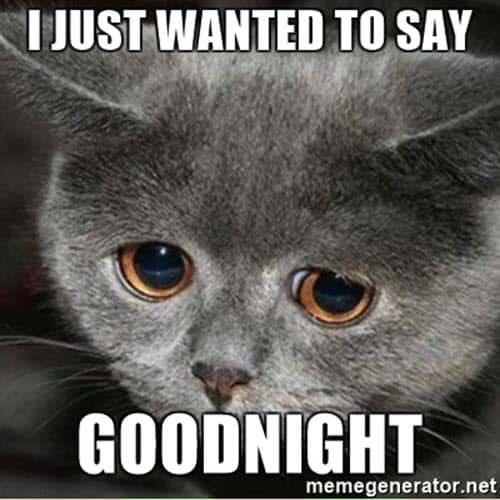 wanted to say goodnight meme