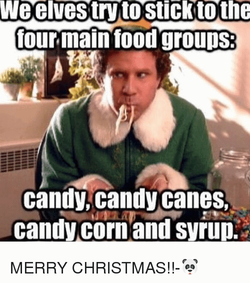 Image result for buddy the elf four food groups meme