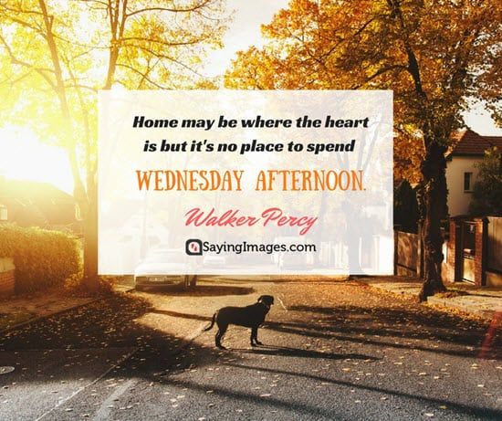 20 Wednesday Quotes To Get You Through The Week ...