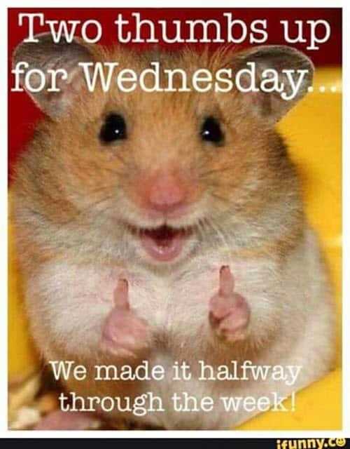 wednesday thumbs up meme