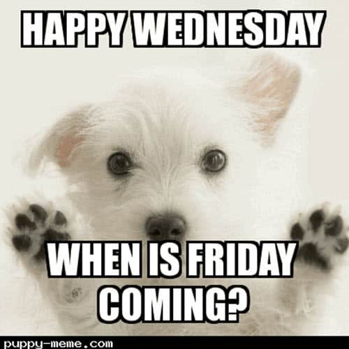 wednesday when is friday coming meme