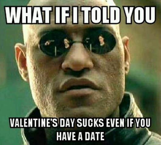 20 Funny Valentine S Day Memes For Singles Sayingimages Com