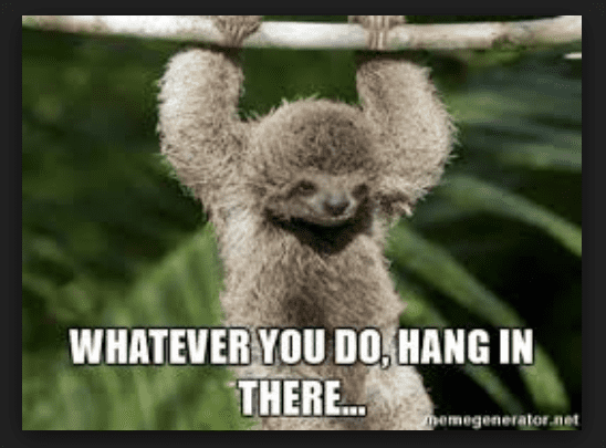 20 Hang In There Meme To Motivate You Sayingimagescom
