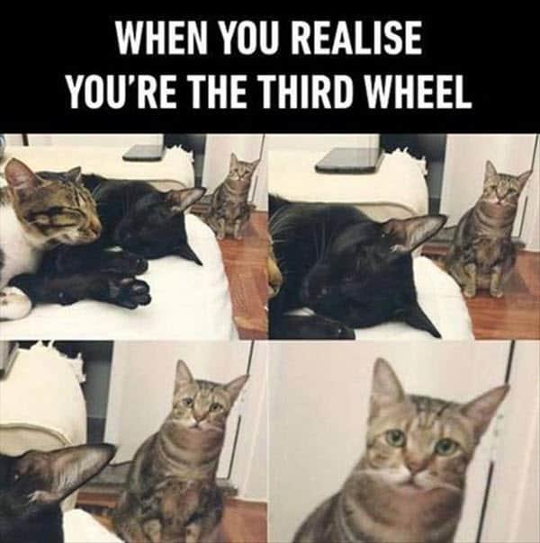 when you realize third wheel meme